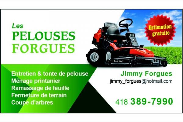 Les Pelouses Forgues
