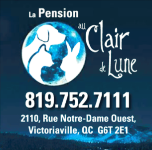 Pension au Clair de Lune