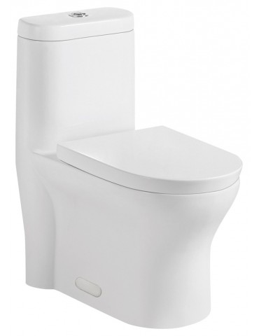 toilette mono-pièce